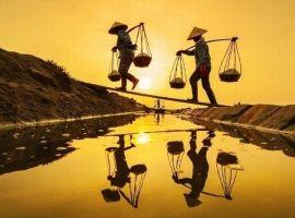 Từ Nha Trang đi Quảng Ngãi bao nhiêu km?