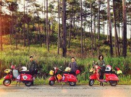 Từ Nha Trang đi Đà Lạt bằng phương tiện gì?